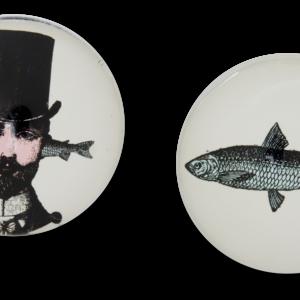 GD062 magnet AristoFish