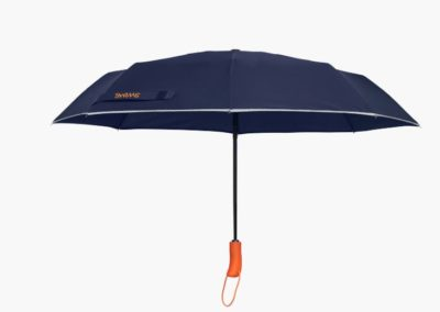 SSWIMS UMBRELLA SHORT