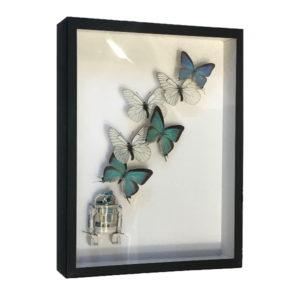 pocket-factory-benjamin-pietri-R2D2-papillons-butterfly-blanc-bleu-